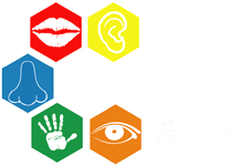 cinsens escape game – millau
